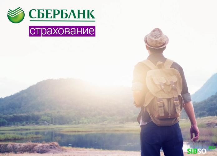 полис для путешественников - картинка